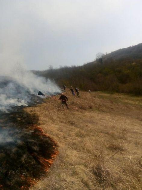 Ponovo požar na Fruškoj gori, u toku potraga za osumnjičenim