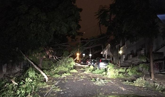 Portugal: Uragan Lesli čupa drveće iz korena, više od 15.000 domova bez struje