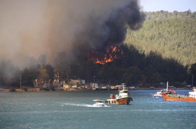 Posle poplava, požari: Raste broj mrtvih u Turskoj VIDEO