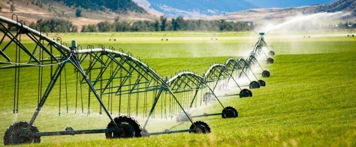 Smernice poljoprivrednicima za konkurisanje za IPARD (AUDIO)