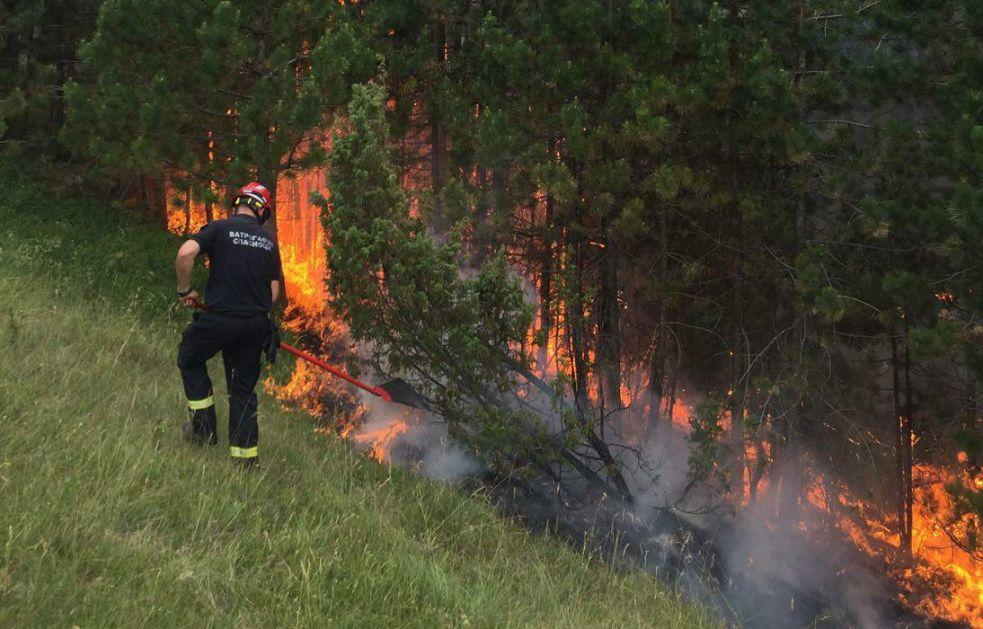Lokalizovan požar na Mokroj Gori