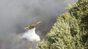 Požar na Peloponezu se ne stišava, osmoro povređenih