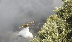 Požar na Peloponezu se ne stišava, osmoro povredjenih