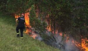 Požar zahvatio 50 hektara nacionalnog parka Prokletije na Kosovu