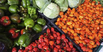 Poziv za učešće u programu podrške razvoju poslovanja prehrambenog sektora u Nišu