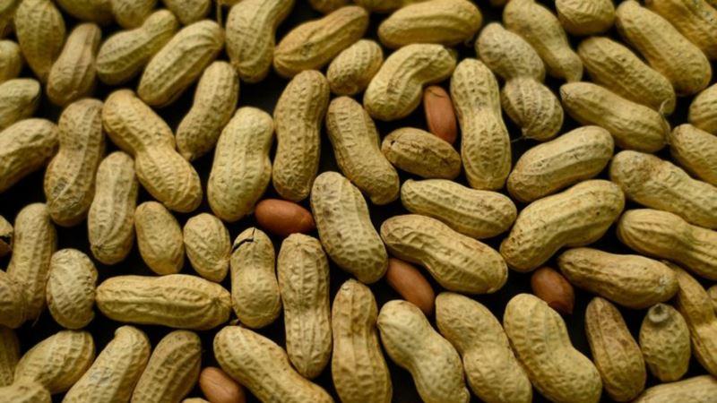 Precizniji test za alergiju na kikiriki