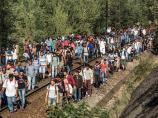 Preko 100 migranata pronađenih u vozu u Vladičinom Hanu raspoređeno u centrima na jugu