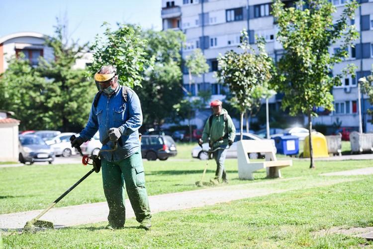 """""""Presušile"""" pare za zelene površine u Banjaluci"""