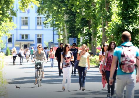 Privatni sektor nije atraktivan za početak karijere: Diplomcima ipak za prvi posao draža DRŽAVNA FOTELJA