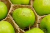 Proboj na veliko tržište: Srpske jabuke na putu za Indiju