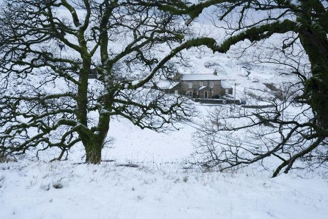 Proleće u decembru kratkog daha, biće snega i to vrlo brzo