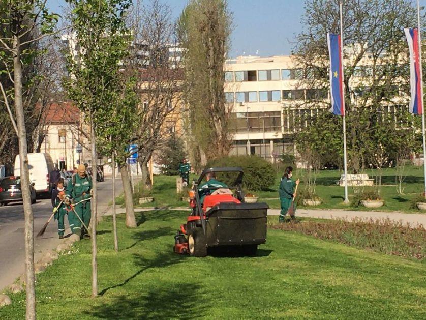 Prolećno uređenje zelenila u Novom Sadu