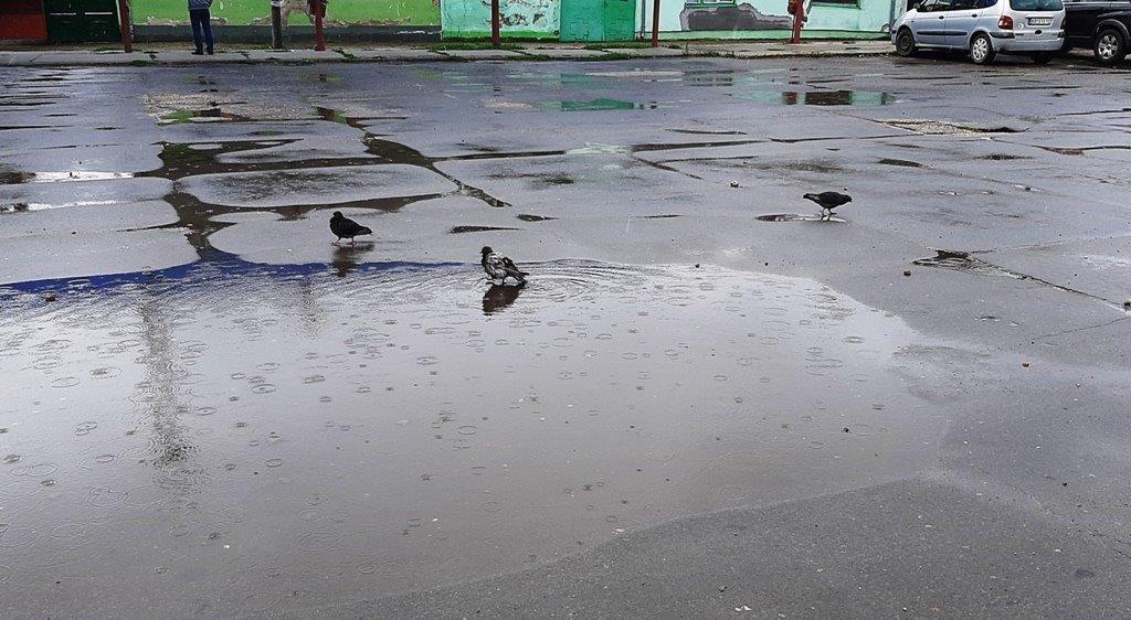 Promenljivo oblačno, svežije, mestimično sa kišom ili kratkotrajnim pljuskovima