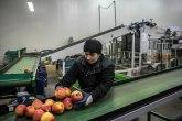 Propala prodaja: Niko ne želi nekada najveću fabriku hrane