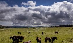 Provale oblaka donose olakšanje pregrejanoj Evropi (VIDEO)
