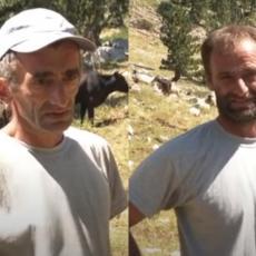 RADNI I VREDNI MOMCI, ALI IM FALI MALO SREĆE: Bulatovići imaju 700 ovaca, 250 koza, 40 krava i nijedan nije oženjen (VIDEO)