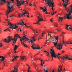 RAZMAŽENI VELIKAN: Milan ne želi da igra Ligu Evope, UEFA na potezu (FOTO)