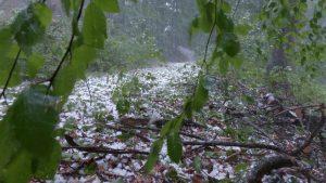 RHMZ upozorava na nevreme, oluja u valjevskom kraju lomila drveće