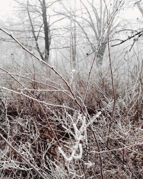 RHZS: Ujutro mraz, tokom dana oblačno