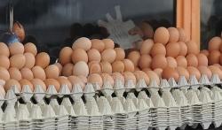 RTS: Ubuduće u prometu samo jaja A klase