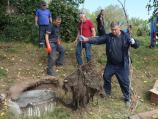 """Radnici """"Naissus""""-a iz kanalizacionih cevi u Nišu vadili korenje i građevinski otpad"""