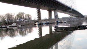 Radojičić: Potencijalni zagađivači Čukaričkog rukavca i Topčiderske reke 35 fabrika