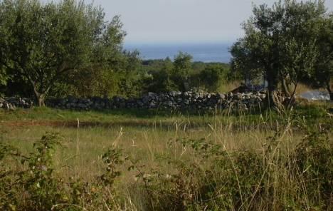 Raste cijena poljoprivrednog zemljišta u Slavoniji i Baranji