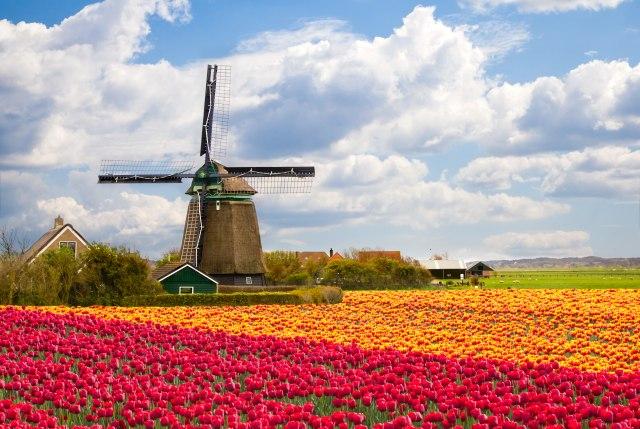 Raste neizvesnost: Kompanije masovno beže u Holandiju