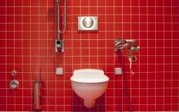 Rekorder bez rekorda: Belgijanac proveo pet dana na WC šolji VIDEO