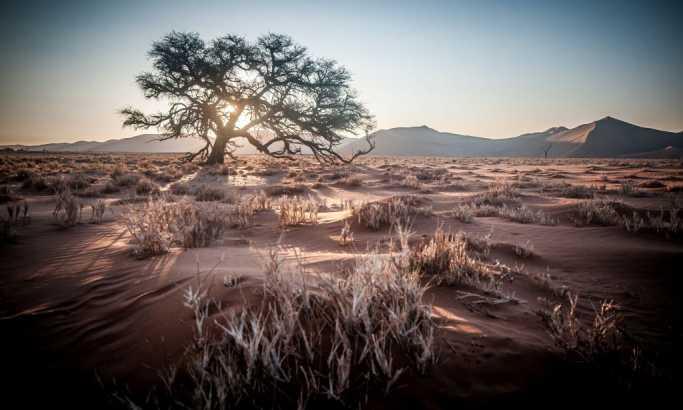 Revolucionarni dokazi iz Afrike o razvoju života na Zemlji