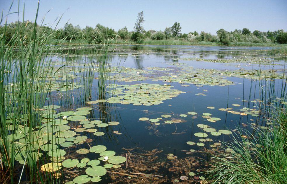 Rezervat biosfere, Mura, Drava i Dunav, bolje povezivanje pet zemalja