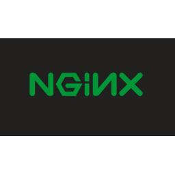Ruska policija izvršila pretres u kancelarijama Nginxa, privedeni suosnivači kompanije