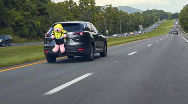 Ružičasti plišani meda iskorišćen za naučna ispitivanja u saobraćaju