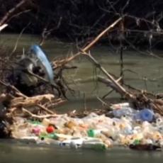 SADA NEMAMO NIJEDNO ŽIVO BIĆE U VODI Tužna reka Morava - prepuna otpada (FOTO)