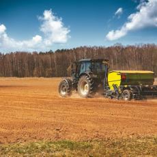 SJAJNA VEST STIŽE SA SRPSKIH POLJA: Završena setva na 600.000 hektara, usevi u dobrom stanju