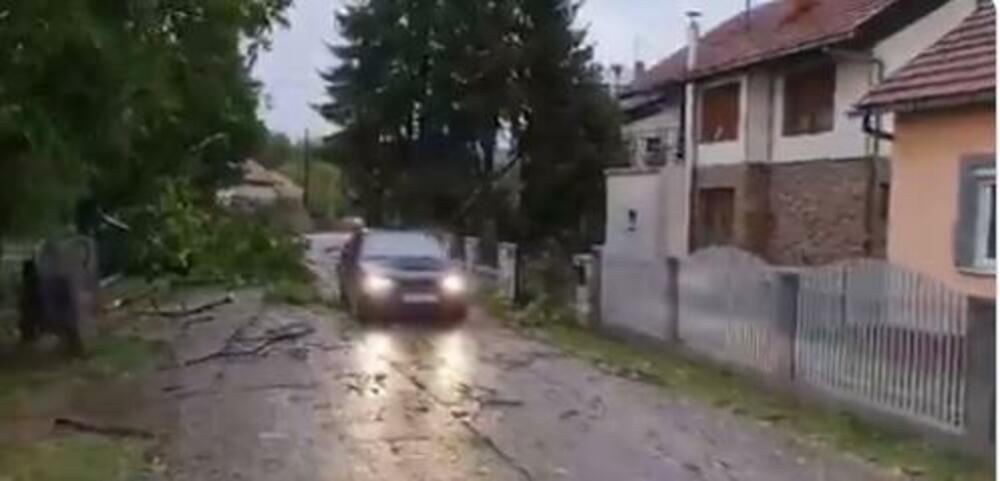 SNAŽNO NEVREME POGODILO BANJA LUKU Vetar lomio grane i rušio drveće, pojedini delovi grada ostali bez struje FOTO, VIDEO