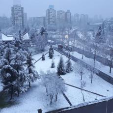 SNEG OKOVAO SRBIJU - BELI POKRIVAČ SE PRUŽIO DUŽ CELE ZEMLJE: Kada nam konačno stiže proleće i lepo vreme?