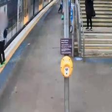 SNIMAK KOJI JE OBIŠAO SVET: Mladiću se ruka ZAGLAVILA U VRATIMA voza, a onda je sve krenulo! (VIDEO)