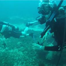 SODOMA I GOMORA AMERIKE: Priča o najgrešnijem gusarskom gradu kog je progutalo more! (VIDEO)