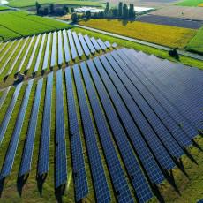 SRBIJA DOBIJA SOLARNE PANELE NA 20.000 HEKTARA: Kreću pregovori sa američkom kompanijom  UGT Renewables LLC