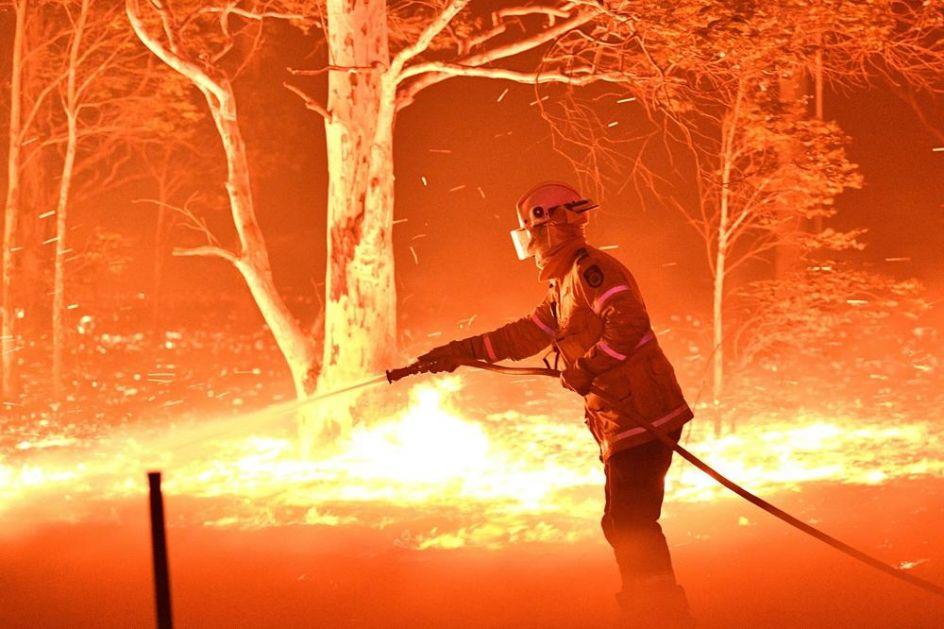 STRAVIČNE POSLEDICE RAZORNIH POŽARA U AUSTRALIJI: Milioni životinja su poginuli u vatrenoj stihiji! (VIDEO)