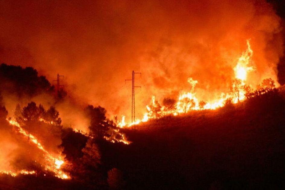 ŠUMSKI POŽAR U KATALONIJI SE OTEO KONTROLI: Situacija haotična, stotine hektara šume uništeno, pepeo stigao do Barselone