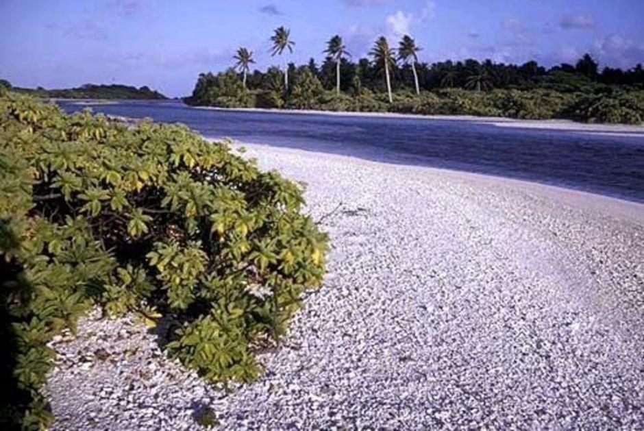 SUPERVOĆE SPASILO MALU OSTRVSKU ZEMLJU OD KORONE: Na Kiribatiju se hvale još jednim lekom protiv opaskog virusa (VIDEO)