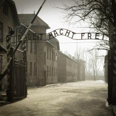 SVET MORA DA ZNA ČINJENICE Rukovodstvo muzeja posvećenog najvećem logoru smrti dalo ostavke