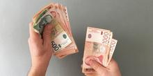 Brnabić: U naredne tri nedelje odluka o rastu plata i penzija