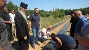 Šabac pomogao sedam srspkih porodica na Kosovu da zasade jagode