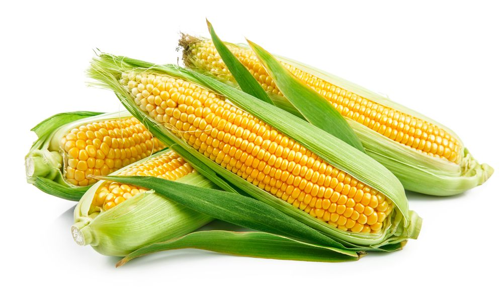 Sada imate razlog više da uživate u njegovom ukusu – kuvani kukuruz je mnogo zdraviji nego što se misli