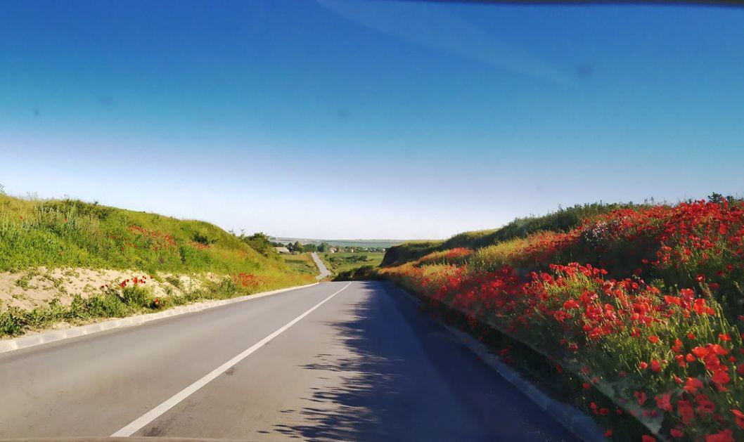 Umeren saobraćaj, bez zadržavanja na graničnim prelazima