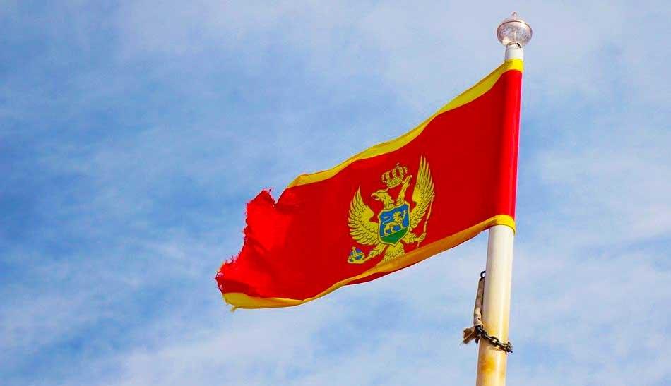 Sekulović: MUP nema nameru da menja Zakon o državljanstvu