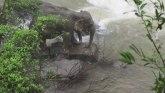 Šest slonova stradalo pokušavajući da se spasi